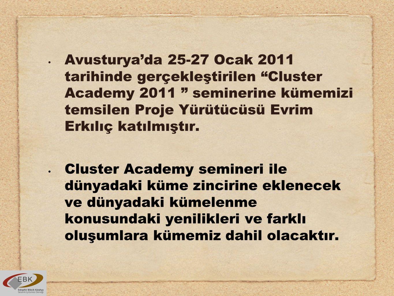 Avusturya'da 25-27 Ocak 2011 tarihinde gerçekleştirilen Cluster Academy 2011 seminerine kümemizi temsilen Proje Yürütücüsü Evrim Erkılıç katılmıştır.
