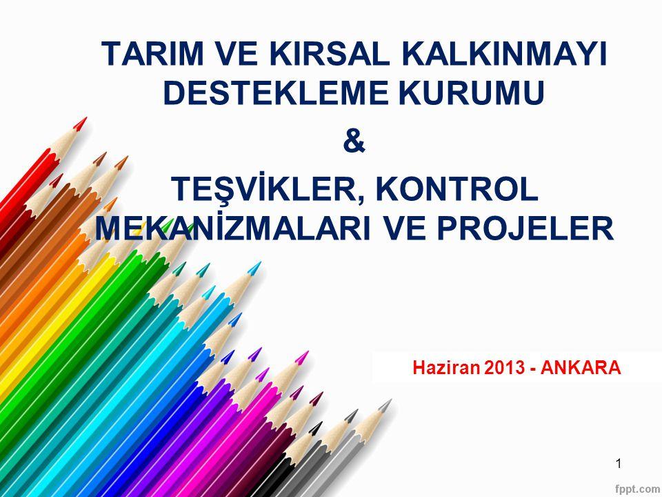 TARIM VE KIRSAL KALKINMAYI DESTEKLEME KURUMU & TEŞVİKLER, KONTROL MEKANİZMALARI VE PROJELER Haziran 2013 - ANKARA 1