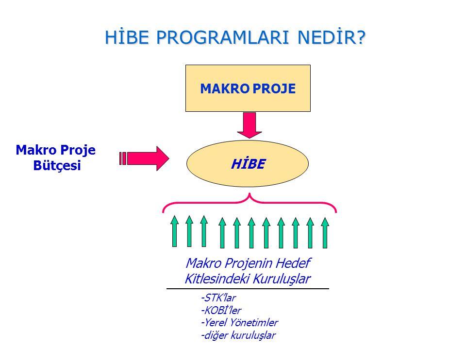 MAKRO PROJE Makro Proje Bütçesi HİBE Makro Projenin Hedef Kitlesindeki Kuruluşlar -STK'lar -KOBİ'ler -Yerel Yönetimler -diğer kuruluşlar HİBE PROGRAML
