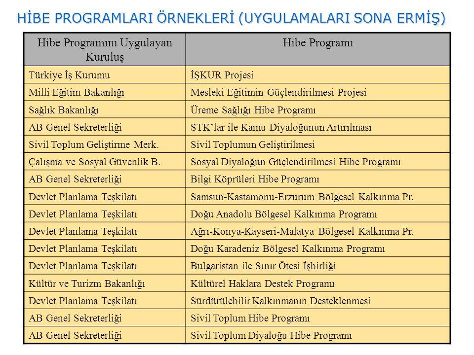 HİBE PROGRAMLARI ÖRNEKLERİ (UYGULAMALARI SONA ERMİŞ) Hibe Programını Uygulayan Kuruluş Hibe Programı Türkiye İş KurumuİŞKUR Projesi Milli Eğitim Bakan