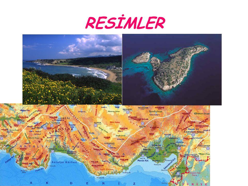 GÜNEYDOĞU ANADOLU Güneydoğu Anadolu Bölgesi Güneydoğu Anadolu Bölgesi, Türkiye nin yedi coğrafi bölgesinden biridir.Güneydoğu Torosların güneyinden Suriye sınırına kadar olan yerleri kaplar.
