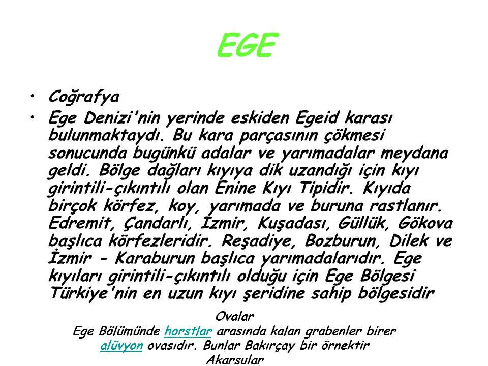 EGE Coğrafya Ege Denizi'nin yerinde eskiden Egeid karası bulunmaktaydı. Bu kara parçasının çökmesi sonucunda bugünkü adalar ve yarımadalar meydana gel