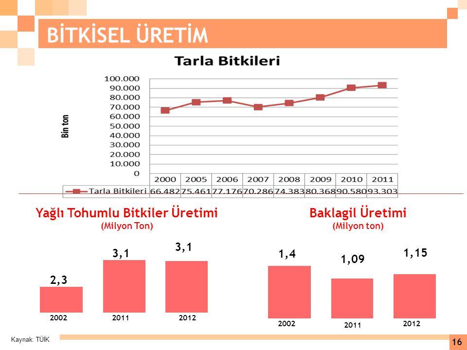 Kaynak: TÜİK 16 BİTKİSEL ÜRETİM 1,15 1,09 1,4 Baklagil Üretimi (Milyon ton) 2002 2011 2012 3,1 2,3 200220112012 Yağlı Tohumlu Bitkiler Üretimi (Milyon