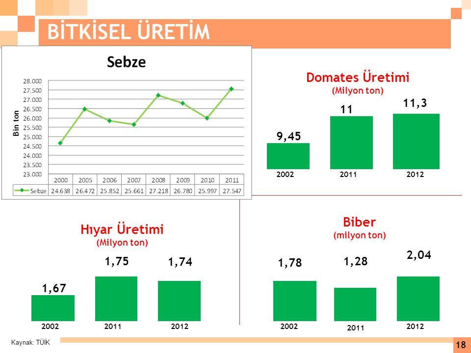 Kaynak: TÜİK 18 BİTKİSEL ÜRETİM 11,3 11 9,45 200220112012 Domates Üretimi (Milyon ton) 1,74 1,75 1,67 200220112012 Hıyar Üretimi (Milyon ton) 2,04 1,2