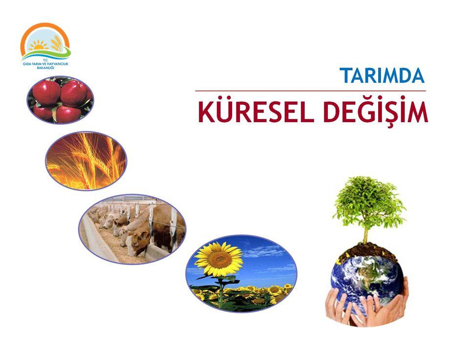 Tarım Strateji Belgesi 14 Temel Kanun Tarımda Derinlik Analizi Tarımda Vizyon 2013-2017 Tarım Kanunu Gıda Kanunu Toprak Koruma ve Arazi Kullanımı Kanunu Organik Tarım Kanunu Tarım Sigortaları Kanunu Tohumculuk Kanunu Tarımsal Üretici Birlikleri Kanunu Bitki Islahçı Haklarının Korunmasına İlişkin Kanun Tarım Ürünleri Lisanslı Depoculuk Kanunu Tarım Ürünleri Lisanslı Depoculuk Kanunu Tarım ve Kırsal Kalkınmayı Destekleme Kurumu Kanunu T.C.