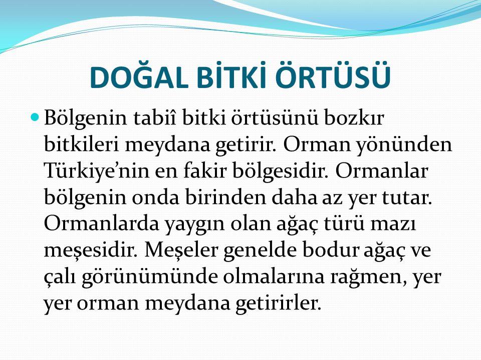 NÜFUS VE YERLERŞME Türkiye nüfûsunun % 11.5'i bölgede yaşamaktadır.