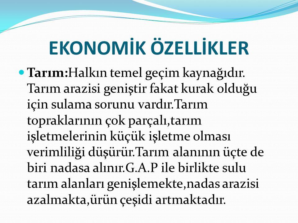 İLLER Adıyaman, Batman, Diyarbakır, Gaziantep, Kilis, Mardin, Siirt, Şanlıurfa