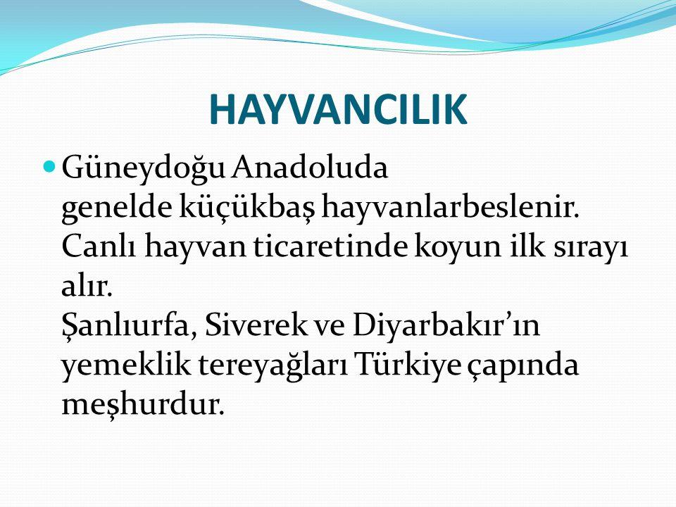 Atlar; Bölgenin ve Türkiye'nin en iyi atları Şanlıurfa ilinde yetiştirilir.