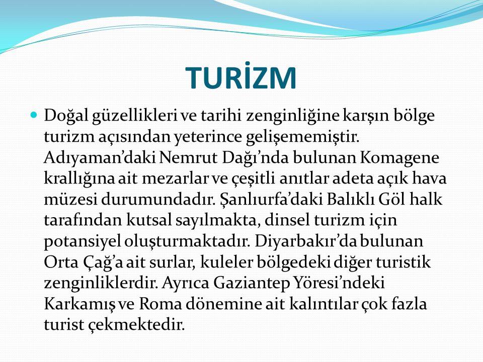 BÖLGENİN ÜLKE EKONOMİSİNDE YERİ Bölgenin Türkiye ekonomisine katkısı çok azdır.