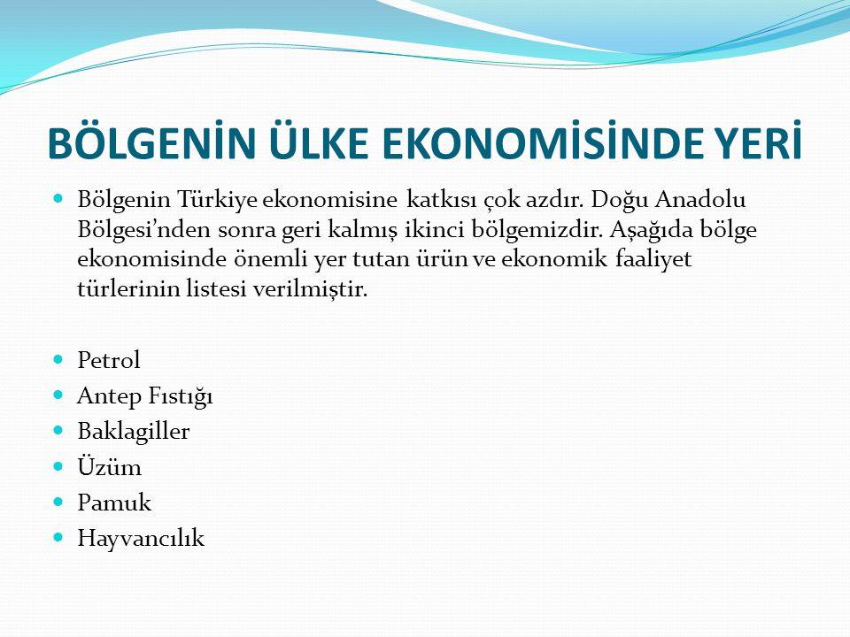 GAP Temel hedefi, Güneydoğu Anadolu Bölgesi halkının gelir düzeyi ve hayat standardını yükselterek, bu bölge ile diğer bölgeler arasındaki gelişmişlik farkını ortadan kaldırmak, kırsal alandaki verimliliği ve istihdam imkanlarını artırarak, sosyal istikrar, ekonomik büyüme gibi milli kalkınma hedeflerine katkıda bulunmak olan GAP, çok sektörlü, entegre ve sürdürülebilir bir kalkınma anlayışı ile ele alınan bir bölgesel kalkınma projesidir.