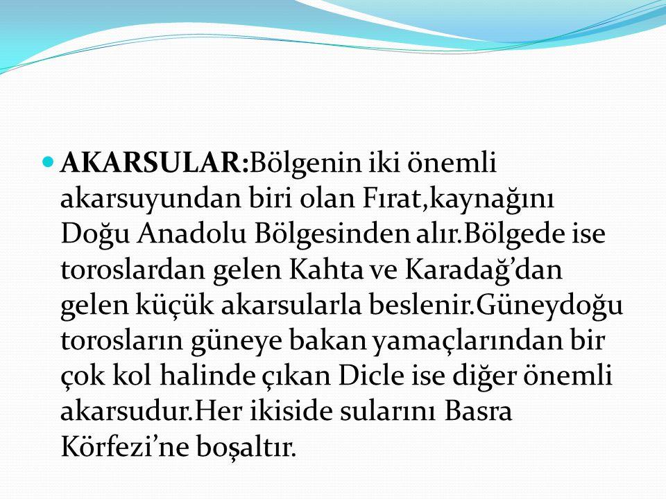 İKLİM Güneydoğu Anadolu bölgesi, kara iklimi ile Akdeniz iklimi tesiri altındadır.