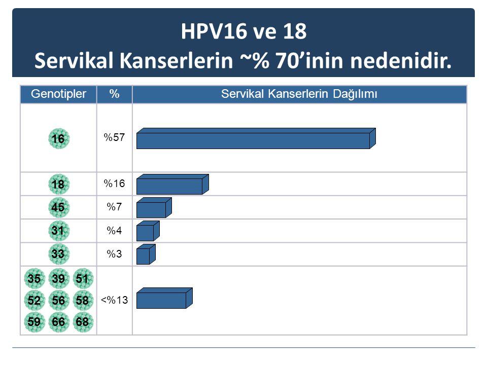 18453133353951 525658 596668 HPV16 ve 18 Servikal Kanserlerin ~% 70'inin nedenidir.