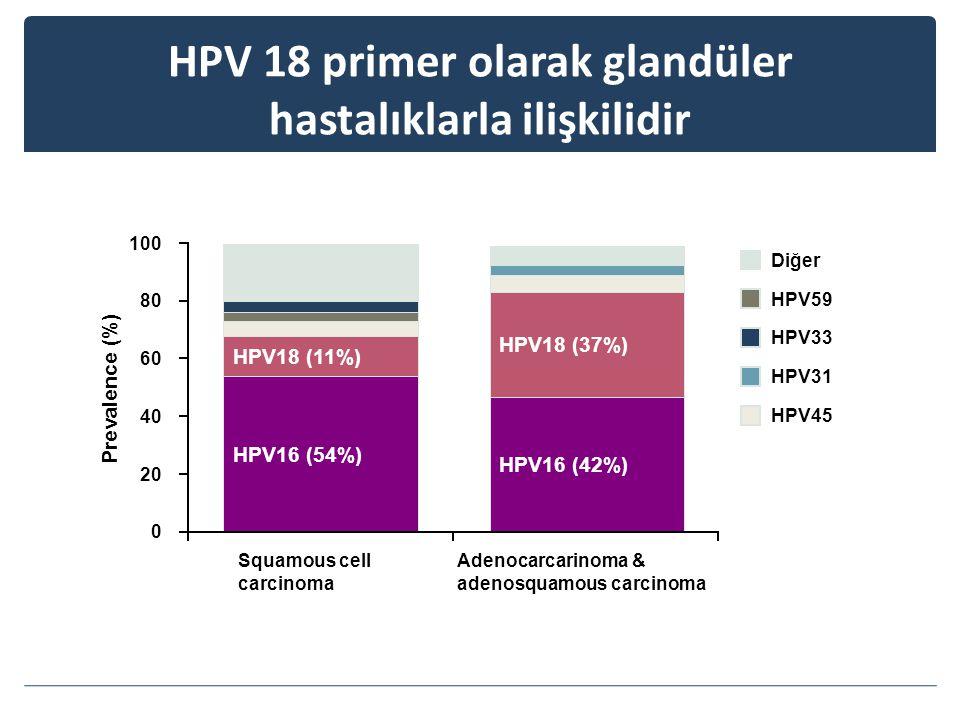 HPV16 (54%) HPV18 (11%) HPV16 (42%) HPV18 (37%) HPV 18 primer olarak glandüler hastalıklarla ilişkilidir HPV45 HPV59 HPV31 HPV33 Diğer 0 20 40 60 80 100 Squamous cell carcinoma Adenocarcarinoma & adenosquamous carcinoma Prevalence (%)
