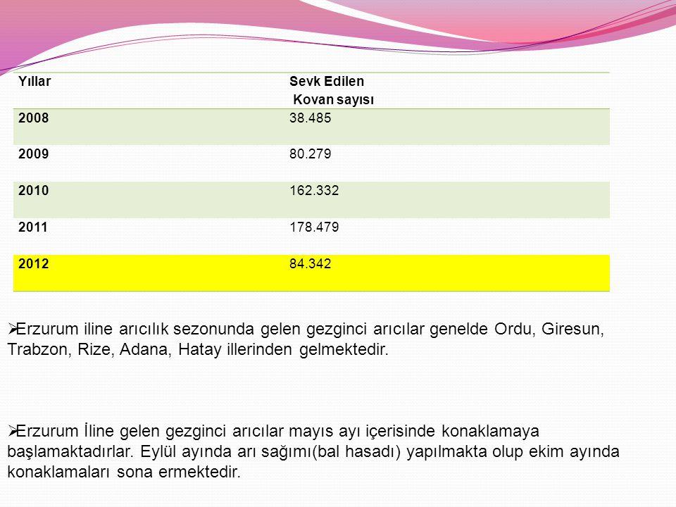Yıllar Sevk Edilen Kovan sayısı 200838.485 200980.279 2010162.332 2011178.479 201284.342  Erzurum iline arıcılık sezonunda gelen gezginci arıcılar genelde Ordu, Giresun, Trabzon, Rize, Adana, Hatay illerinden gelmektedir.