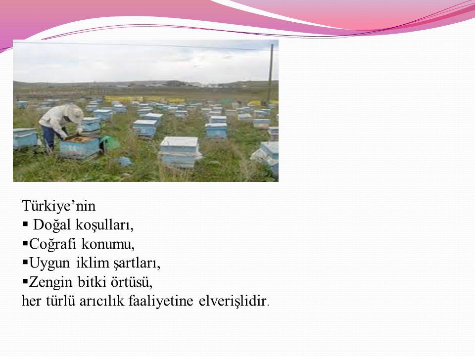 Türkiye'nin  Doğal koşulları,  Coğrafi konumu,  Uygun iklim şartları,  Zengin bitki örtüsü, her türlü arıcılık faaliyetine elverişlidir.