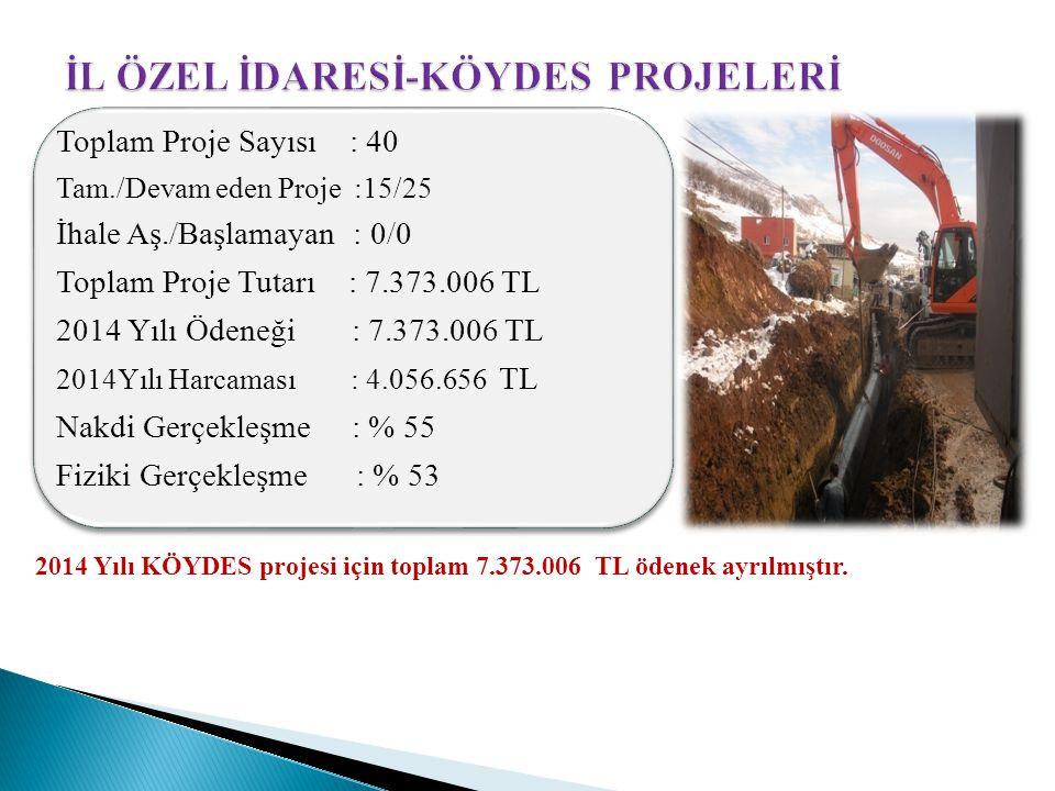 2014 Yılı KÖYDES projesi için toplam 7.373.006 TL ödenek ayrılmıştır.