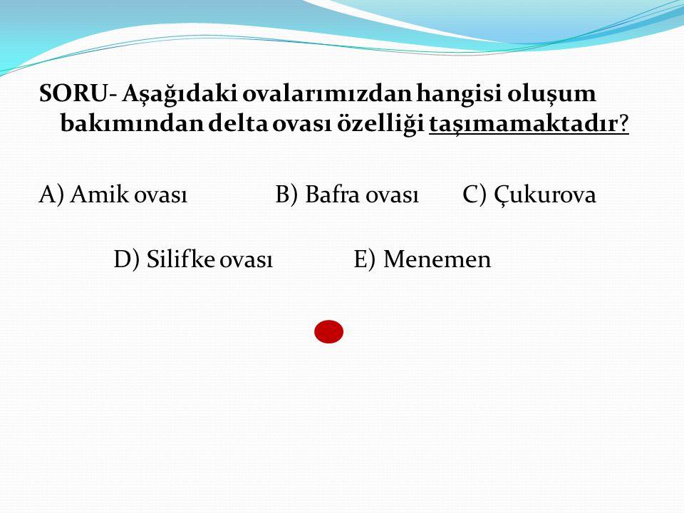 SORU- Aşağıdaki ovalarımızdan hangisi oluşum bakımından delta ovası özelliği taşımamaktadır? A) Amik ovası B) Bafra ovası C) Çukurova D) Silifke ovası