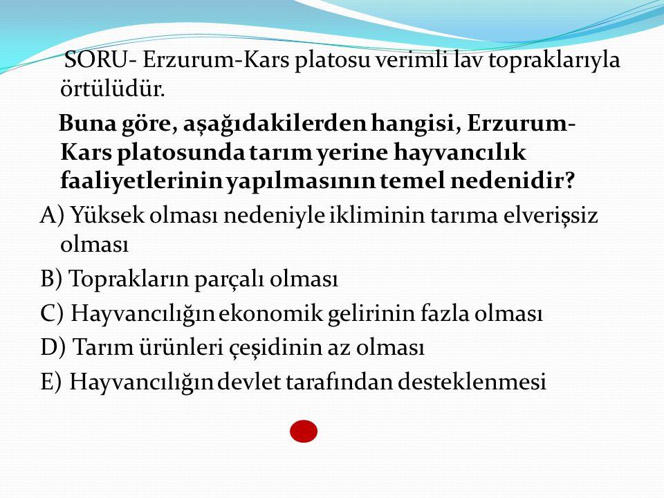 SORU- Erzurum-Kars platosu verimli lav topraklarıyla örtülüdür. Buna göre, aşağıdakilerden hangisi, Erzurum- Kars platosunda tarım yerine hayvancılık