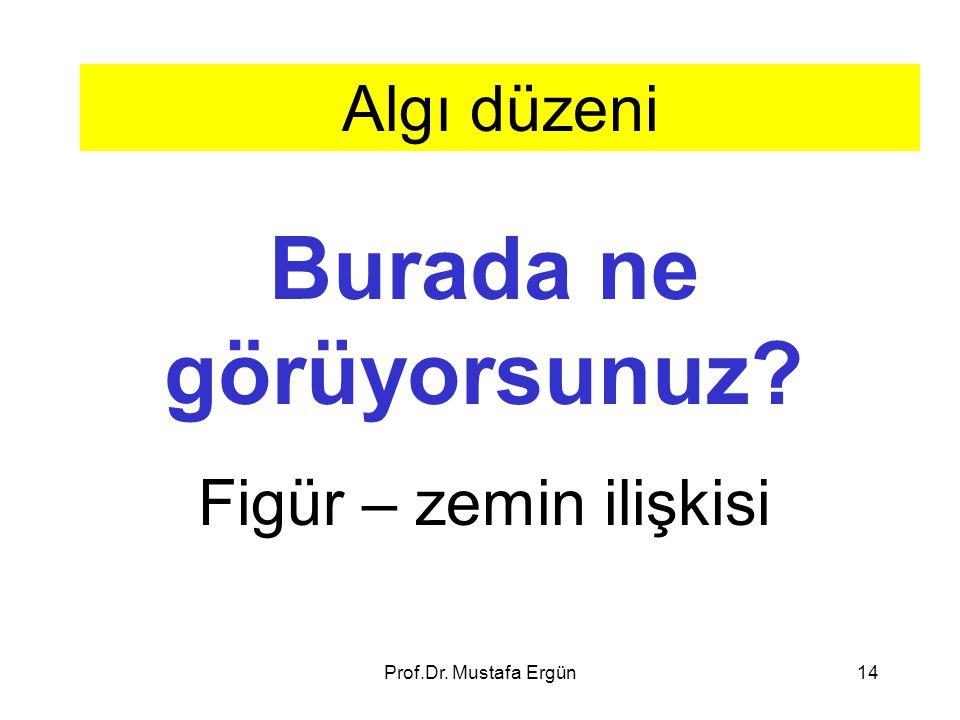 Prof.Dr. Mustafa Ergün14 Algı düzeni Burada ne görüyorsunuz? Figür – zemin ilişkisi