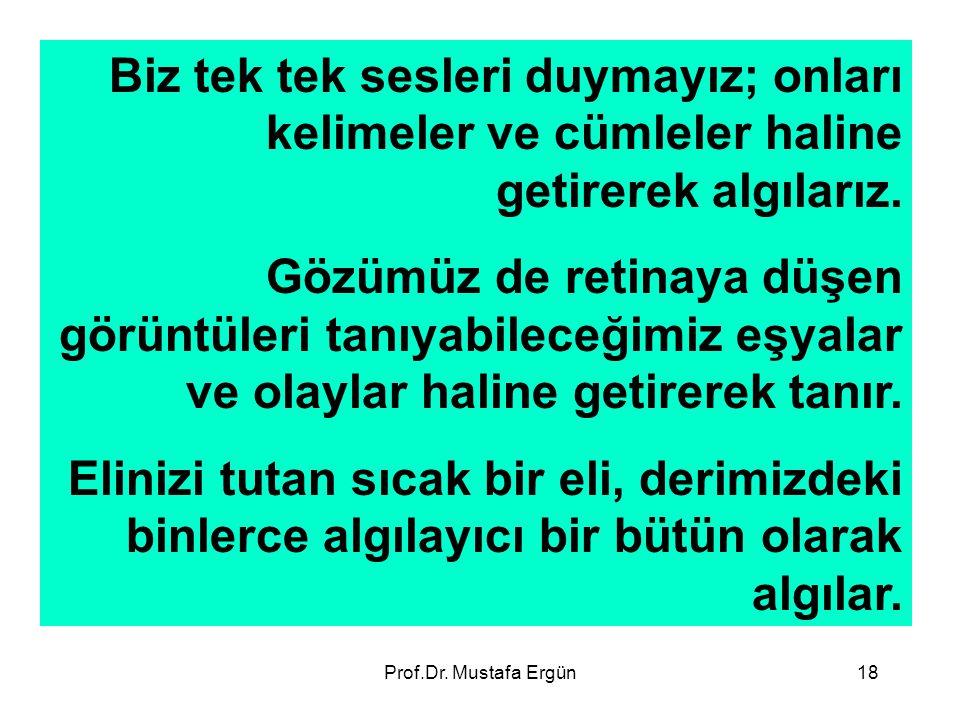 Prof.Dr. Mustafa Ergün18 Biz tek tek sesleri duymayız; onları kelimeler ve cümleler haline getirerek algılarız. Gözümüz de retinaya düşen görüntüleri