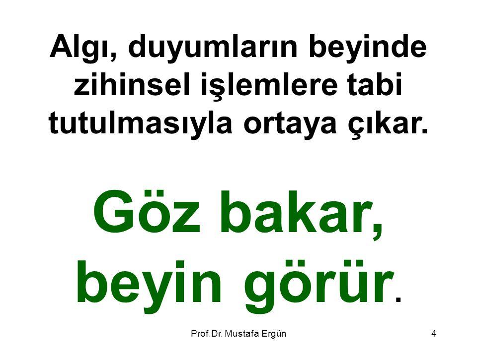 Prof.Dr. Mustafa Ergün15
