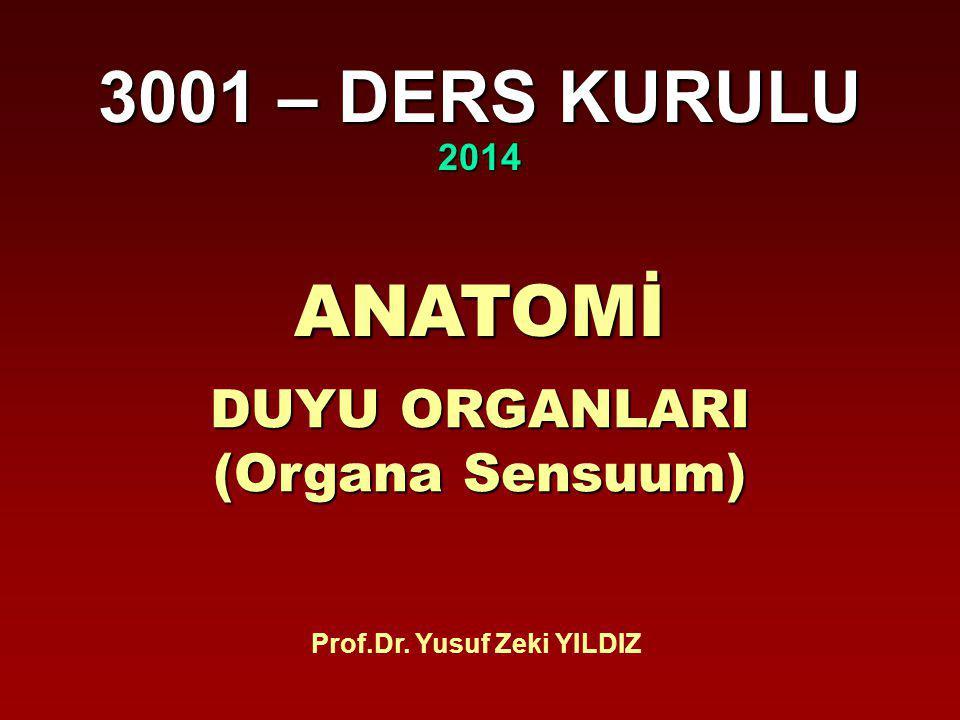3001 – DERS KURULU 2014 ANATOMİ DUYU ORGANLARI (Organa Sensuum) Prof.Dr. Yusuf Zeki YILDIZ