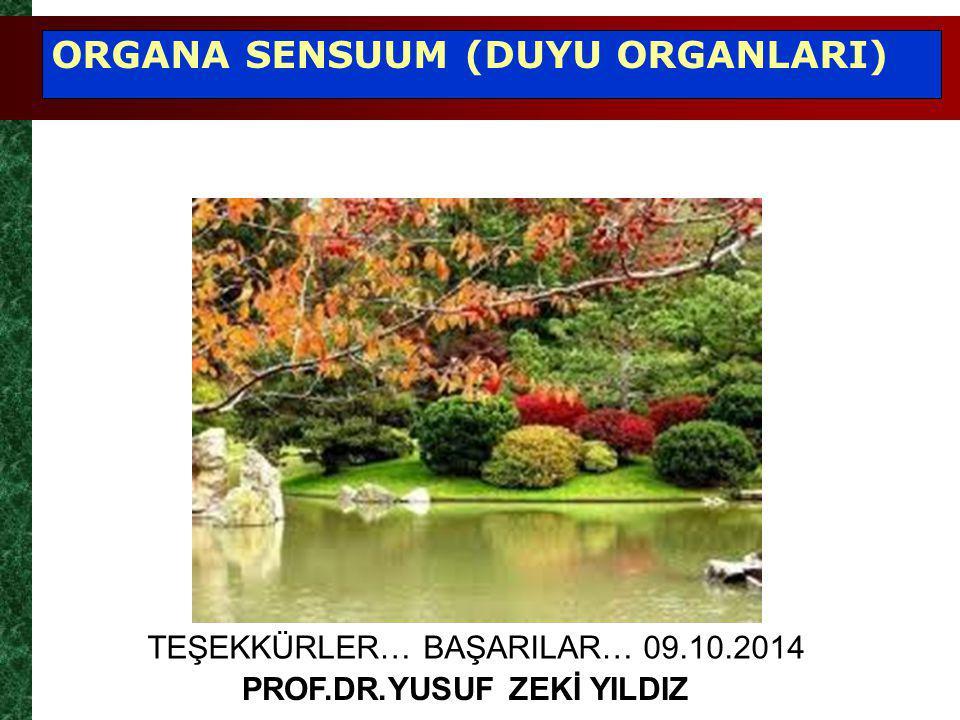 TEŞEKKÜRLER… BAŞARILAR… 09.10.2014 PROF.DR.YUSUF ZEKİ YILDIZ ORGANA SENSUUM (DUYU ORGANLARI)