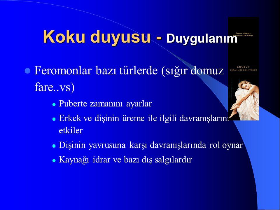 Feromonlar bazı türlerde (sığır domuz fare..vs) Puberte zamanını ayarlar Erkek ve dişinin üreme ile ilgili davranışlarını etkiler Dişinin yavrusuna ka
