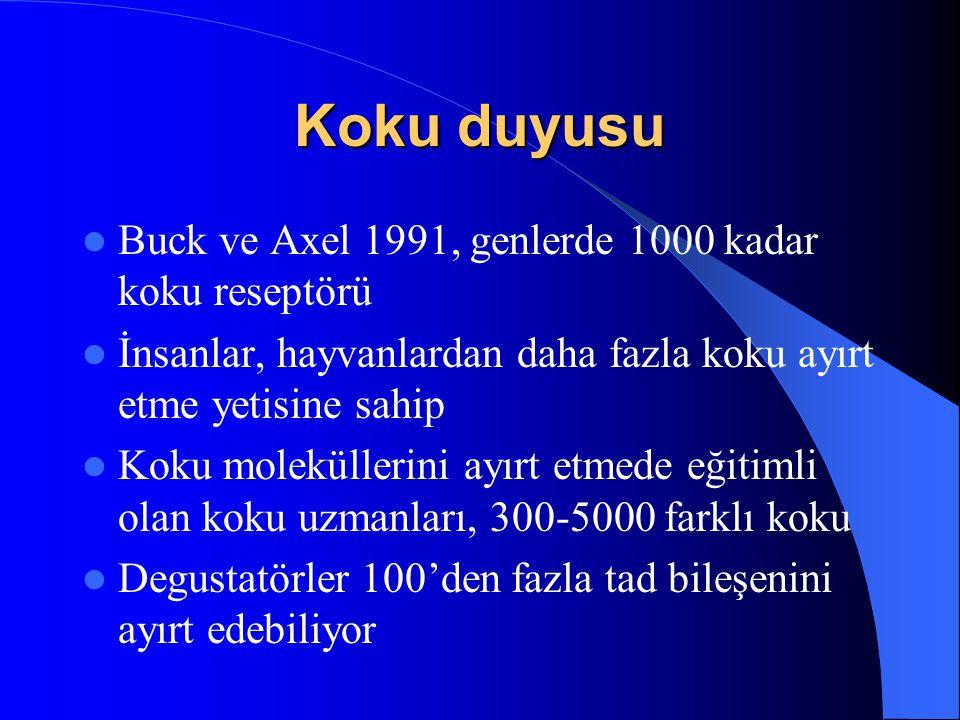 Buck ve Axel 1991, genlerde 1000 kadar koku reseptörü İnsanlar, hayvanlardan daha fazla koku ayırt etme yetisine sahip Koku moleküllerini ayırt etmede