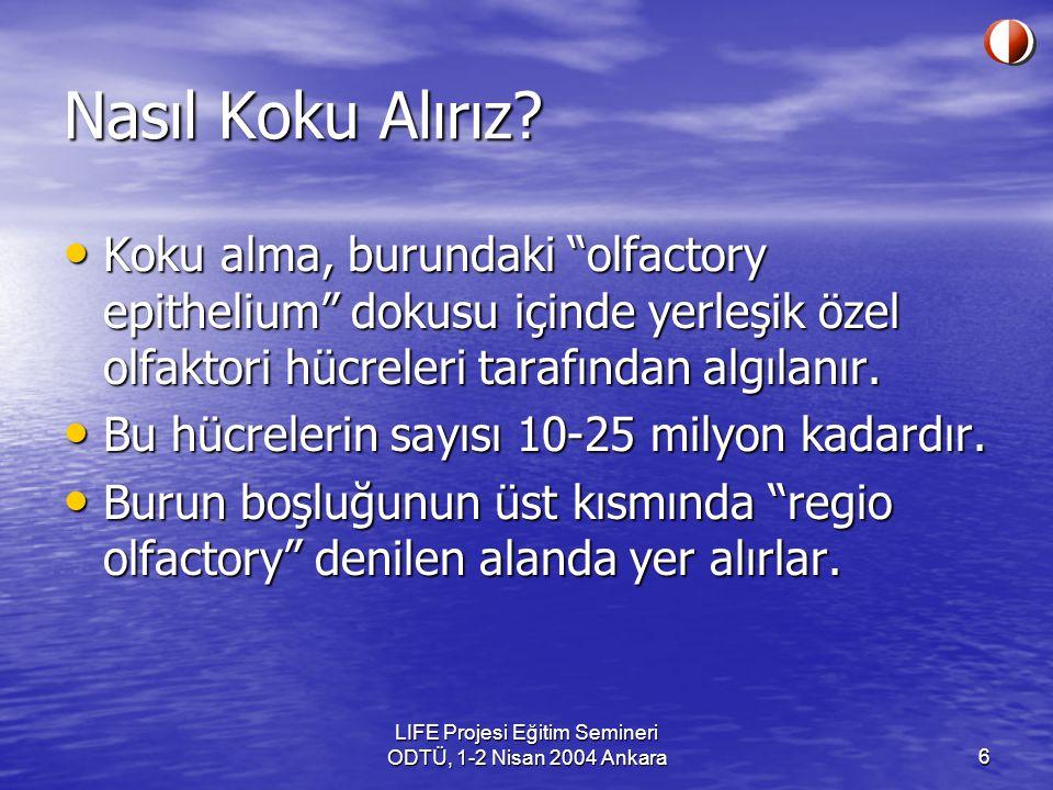 LIFE Projesi Eğitim Semineri ODTÜ, 1-2 Nisan 2004 Ankara17 Koku neden önemlidir.