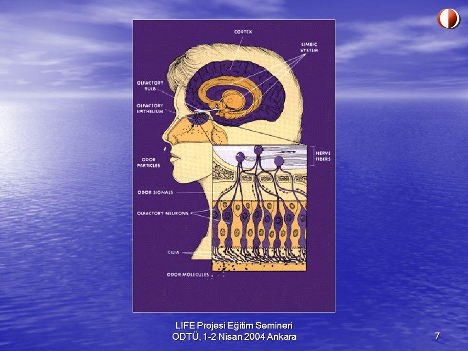 8 Devam Olfaktori hücrelerinin burnun derin kısımlarında olması nedeni ile, içeri çekilen hava genelde doğrudan olfaktori alanı ile temas etmez.