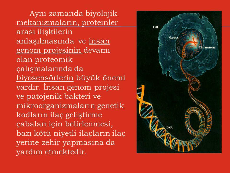 Aynı zamanda biyolojik mekanizmaların, proteinler arası ilişkilerin anlaşılmasında ve insan genom projesinin devamı olan proteomik çalışmalarında da b