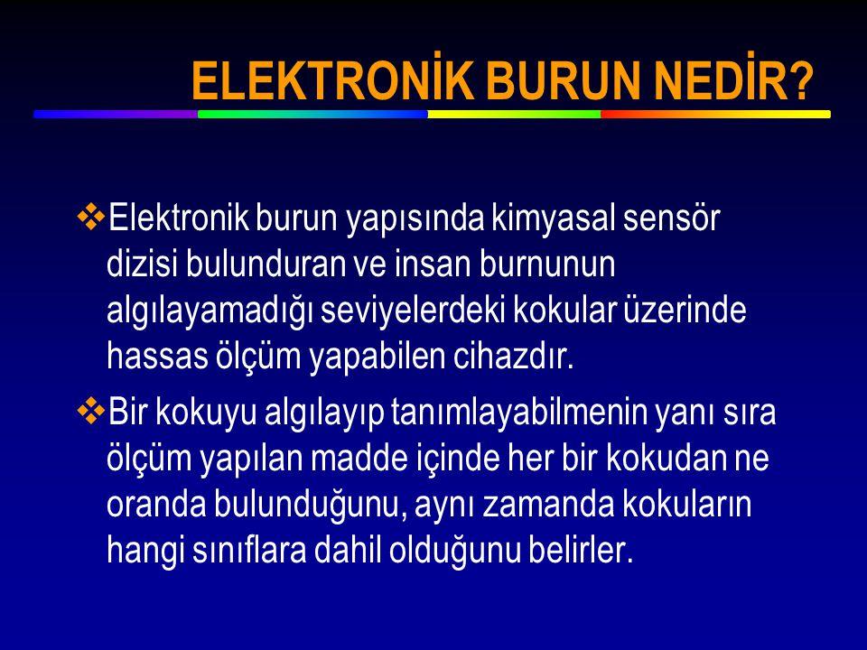  Elektronik Burun'la ilgili ilk araştırmalar 1970 yılında İngiltere'de Warwick Üniversitesinde başlamıştır.