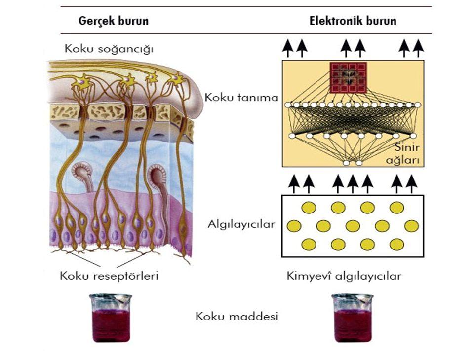 Yığın Akustik Dalga (BAW) Cihazları  Kuvars Kristal Mikrobalans (QCM) olarak da adlandırılırlar.