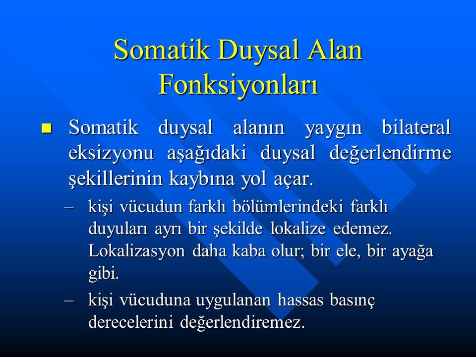 Somatik Duysal Alan Fonksiyonları Somatik duysal alanın yaygın bilateral eksizyonu aşağıdaki duysal değerlendirme şekillerinin kaybına yol açar. Somat