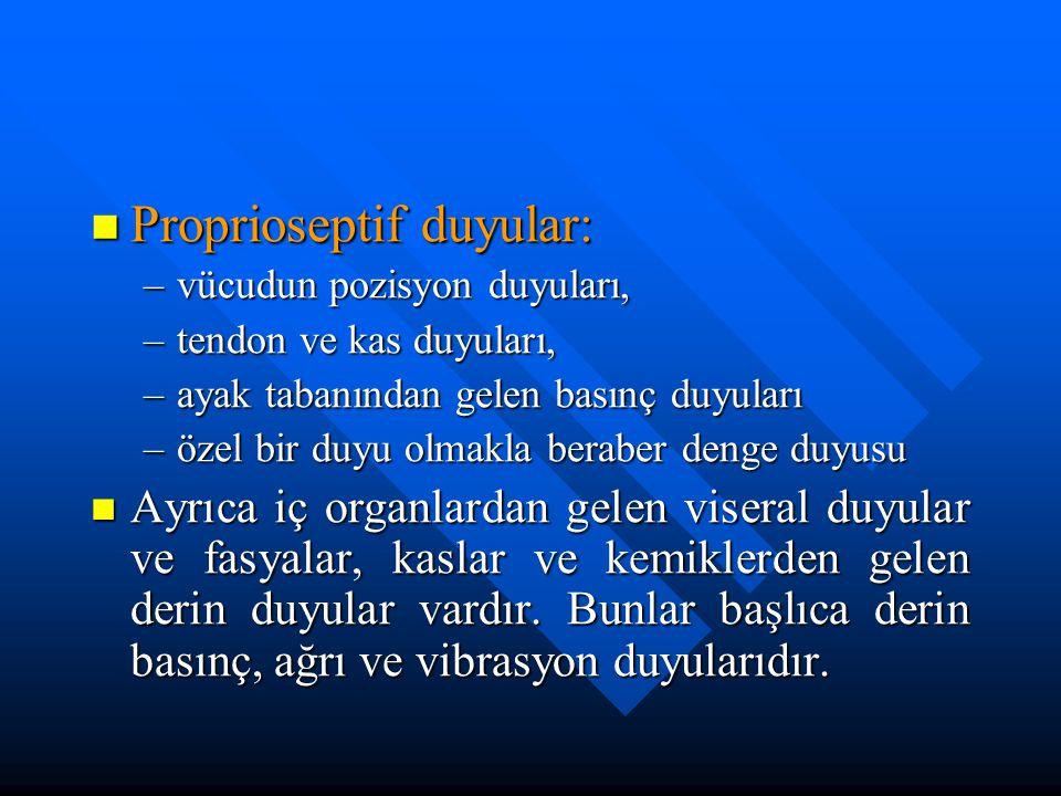 Proprioseptif duyular: Proprioseptif duyular: –vücudun pozisyon duyuları, –tendon ve kas duyuları, –ayak tabanından gelen basınç duyuları –özel bir du