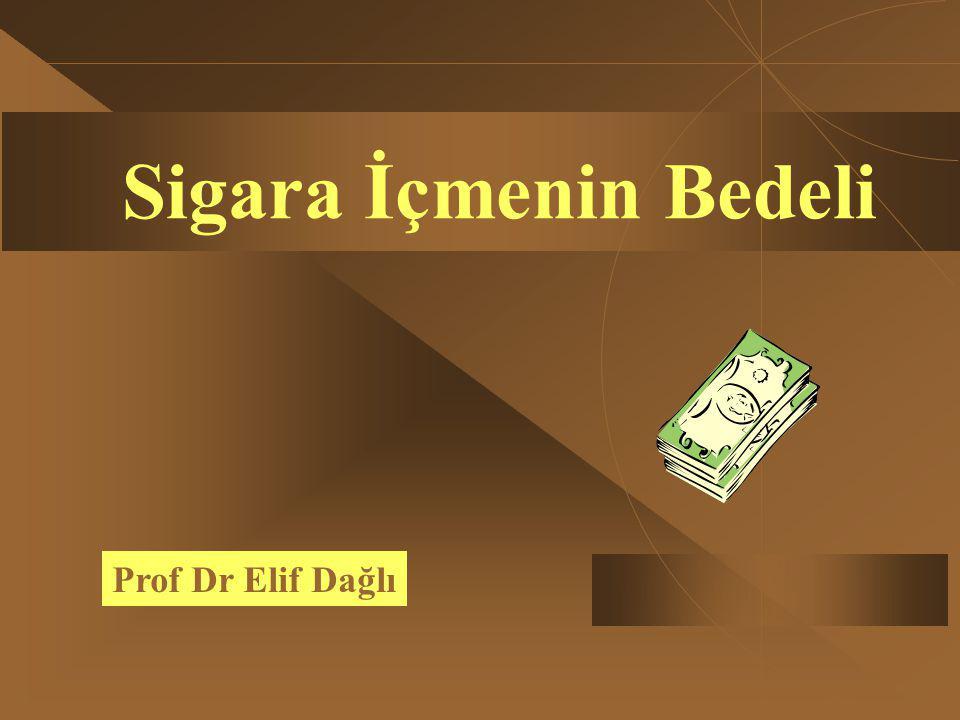 Sigara İçmenin Bedeli Prof Dr Elif Dağlı