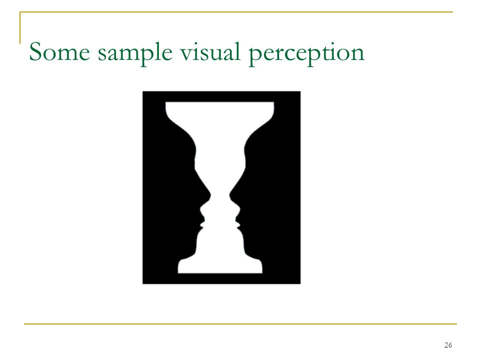 26 Some sample visual perception