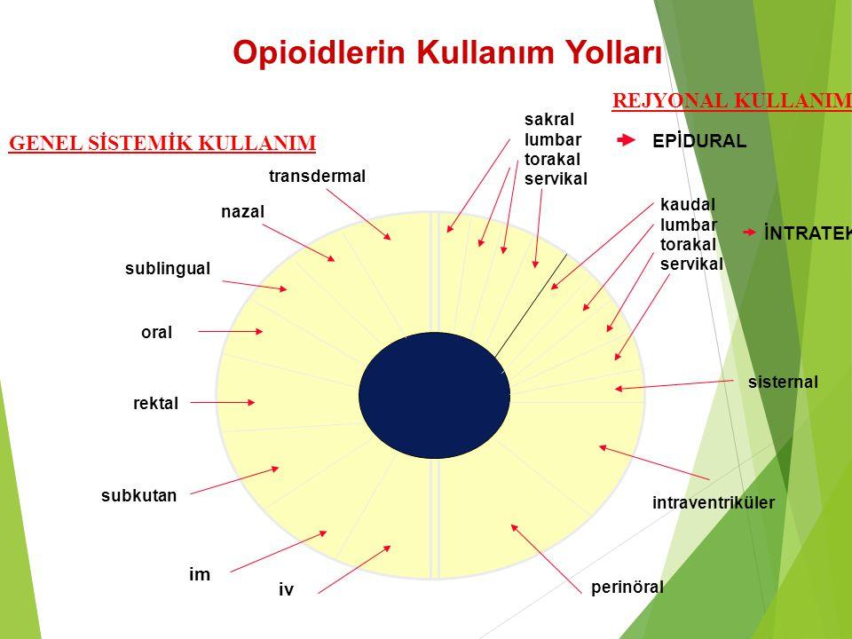 Opioidlerin Kullanım Yolları transdermal nazal sublingual oral rektal subkutan im iv sakral lumbar torakal servikal kaudal lumbar torakal servikal sis