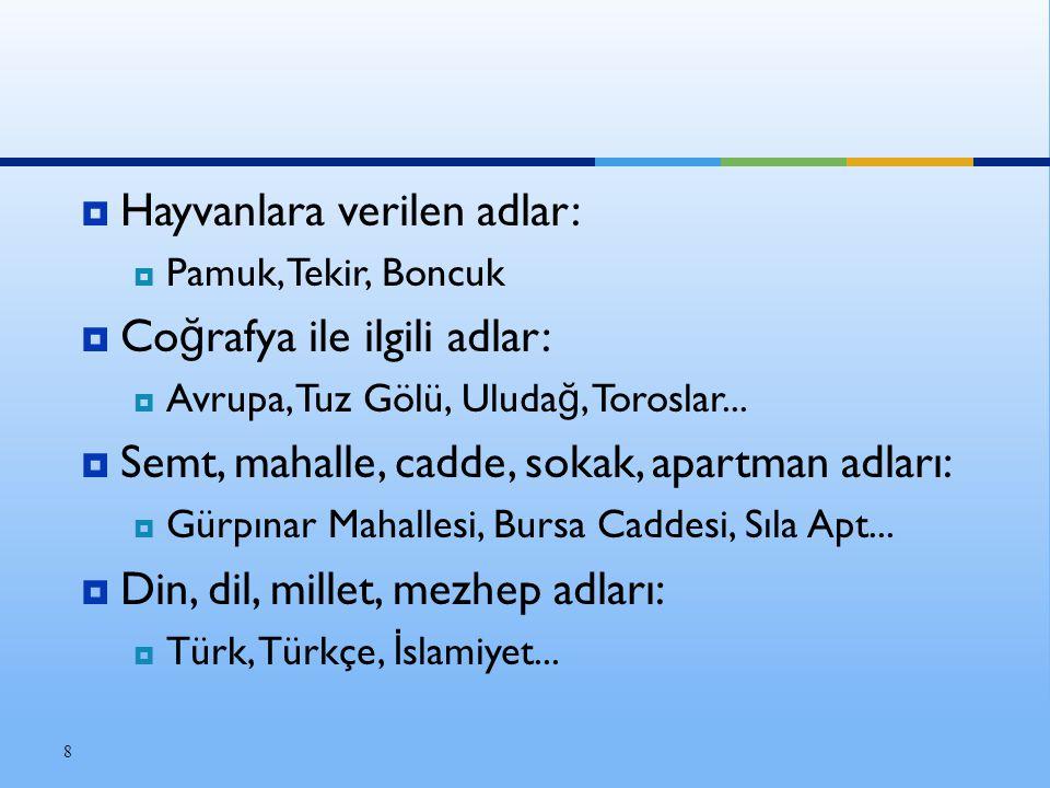  Hayvanlara verilen adlar:  Pamuk, Tekir, Boncuk  Co ğ rafya ile ilgili adlar:  Avrupa, Tuz Gölü, Uluda ğ, Toroslar...  Semt, mahalle, cadde, sok