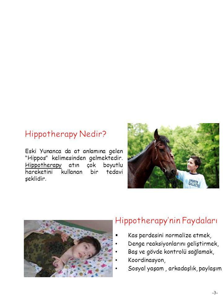 """-3- Eski Yunanca da at anlamına gelen """"Hippos"""" kelimesinden gelmektedir. Hippotherapy atın çok boyutlu hareketini kullanan bir tedavi şeklidir.  Kas"""