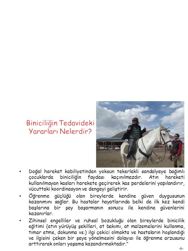 -7- Binicinin at yardımıyla oluşan hareketi, sinir sistemi ve beyin dahil olmak üzere tüm vücuda uyarılar gönderir.