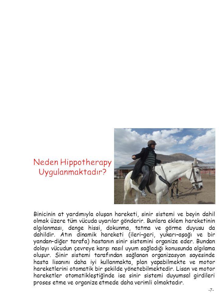 -8- At terapisinde, binicinin atı kontrolünden ziyade, at biniciyi etkilemektedir.