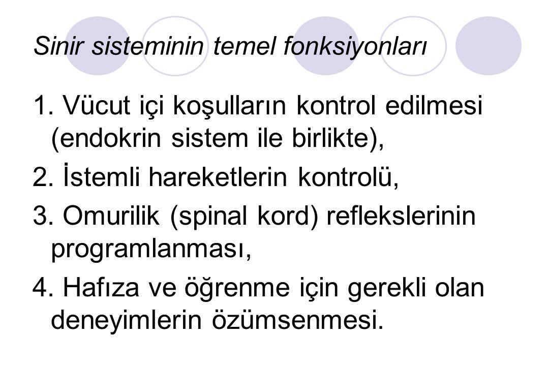 Sinir sisteminin temel fonksiyonları 1.