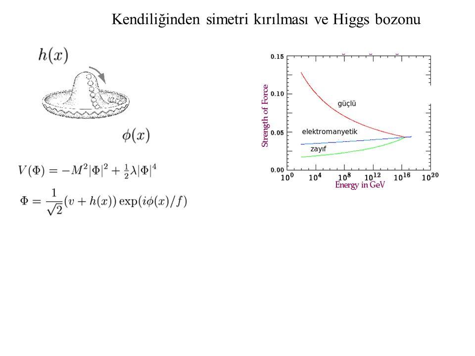 Kendiliğinden simetri kırılması ve Higgs bozonu