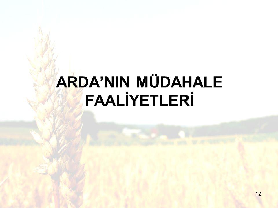 12 ARDA'NIN MÜDAHALE FAALİYETLERİ