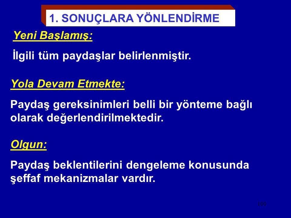 """99 FARKLI """"KURUMSAL"""" OLGUNLUK AŞAMALARINDA TEMEL KAVRAMLAR"""