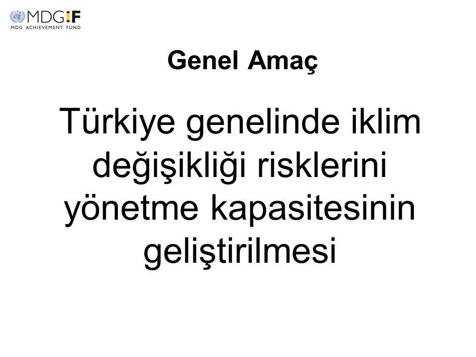 Genel Amaç Türkiye genelinde iklim değişikliği risklerini yönetme kapasitesinin geliştirilmesi