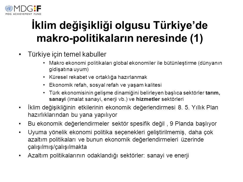İklim değişikliği olgusu Türkiye'de makro-politikaların neresinde (1) Türkiye için temel kabuller Makro ekonomi politikaları global ekonomiler ile büt