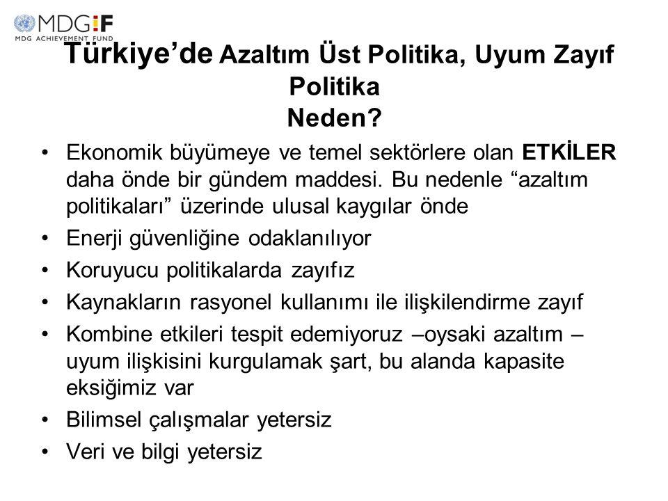 Türkiye'de Azaltım Üst Politika, Uyum Zayıf Politika Neden? Ekonomik büyümeye ve temel sektörlere olan ETKİLER daha önde bir gündem maddesi. Bu nedenl